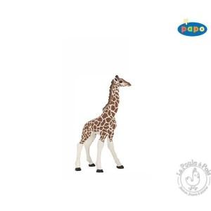 Figurine girafon - Papo