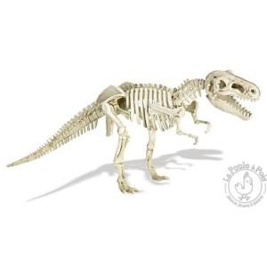 Grand kit de fouille archéologique - Tyrannosaure