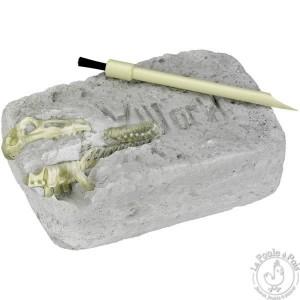 kit-de-fouille-archeologique-stegosaure (1)