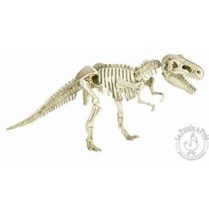 kit-de-fouille-archeologique-tyrannosaure (1)