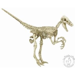 Kit de fouille archéologique - Vélociraptor