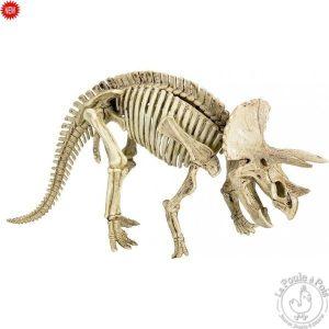 Grand kit de fouille archéologique - Tricératops